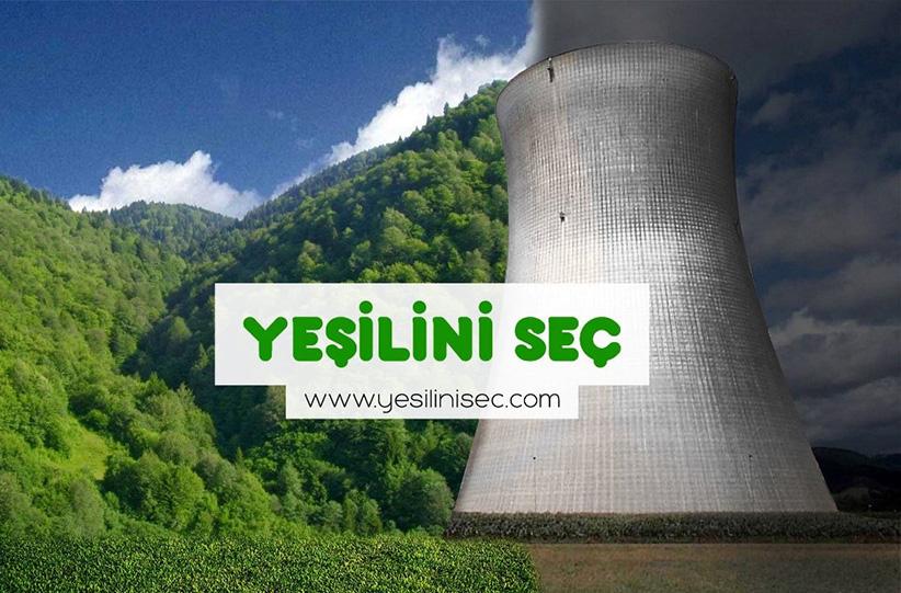 YSR Greenpeace (2)