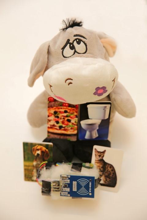 Akıllı kartlarla sayesinde otizmli çocuk kartı oyuncağa yaklaştırdığında anne veya babasının sesinden, yemek, tuvalet, kedi, köpek gibi kelimelerin okunuşlarını duyabiliyor.