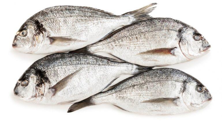 Balık zekayı geliştiriyor, bağışıklığı güçlendiriyor