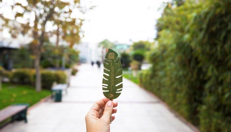 Teşekkür belgeleri ağaçlara dönüşüyor